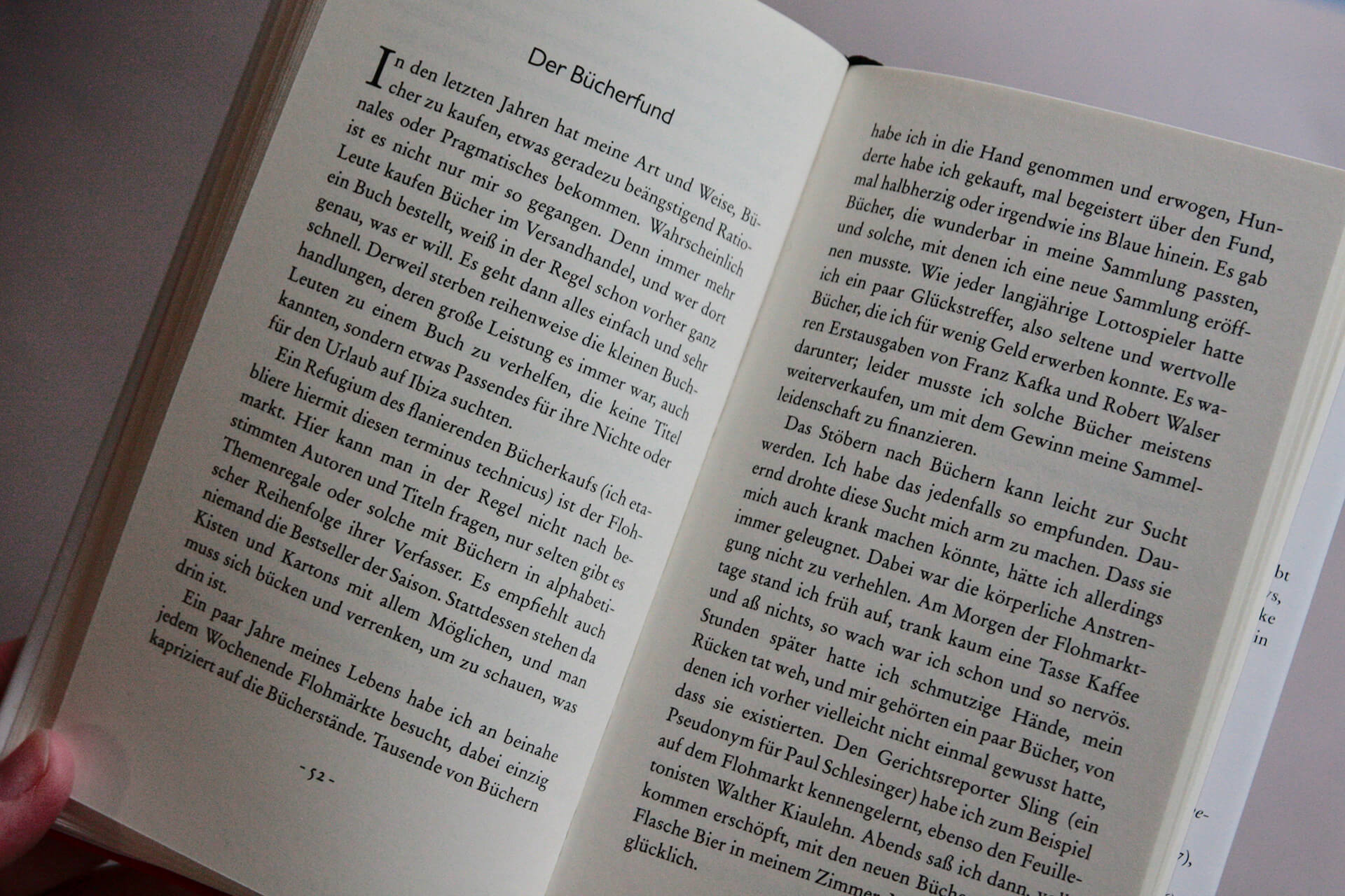 Spinnen-Buch-4