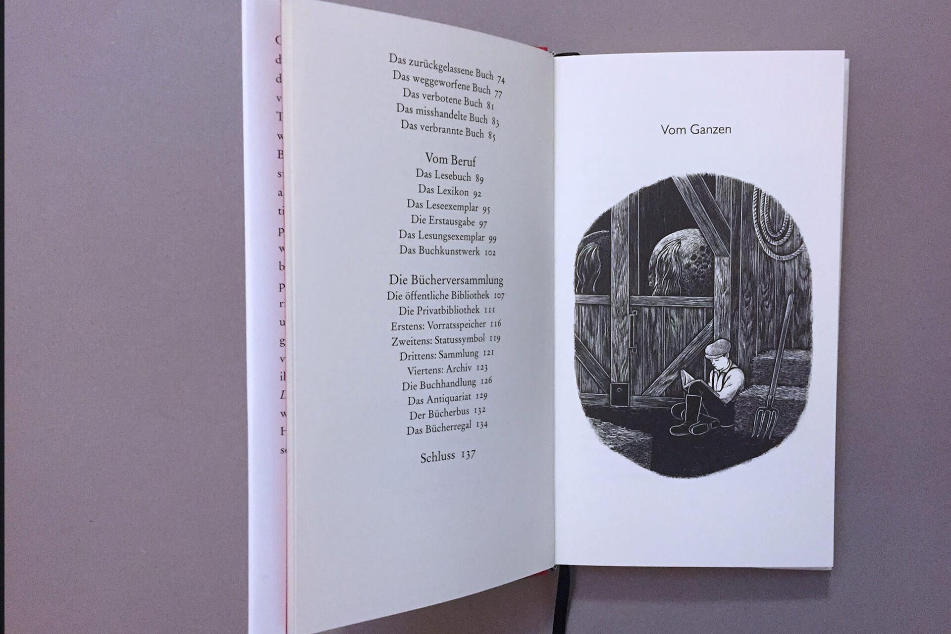Spinnen-Buch-6